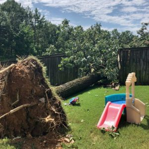 Picture of a tree uprooted in a back yard from storm damaged that needs to be removed in Dublin, OH